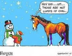 142 Best Humor ... Funny Christmas Horse Quotes
