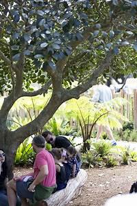 Ian Potter Children's WILD PLAY Garden opens in Sydney's ...