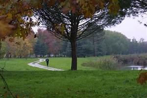 Bois De Chauffage Bordeaux : bois de bordeaux et parc floral bordeaux ~ Dailycaller-alerts.com Idées de Décoration