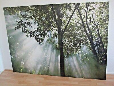 Ikea Badmöbel Bilder by Ikea Bild Leinwand 140 X 200 Cm Wald Motiv Mit Rahmen