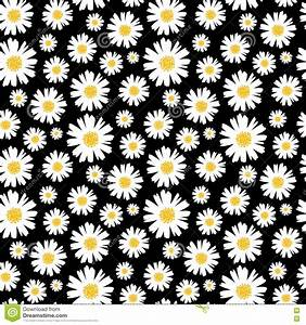 Seamless Daisy Background And Pattern Vector Illustration ...