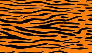 Tiger Stripes Background Related Keywords - Tiger Stripes ...