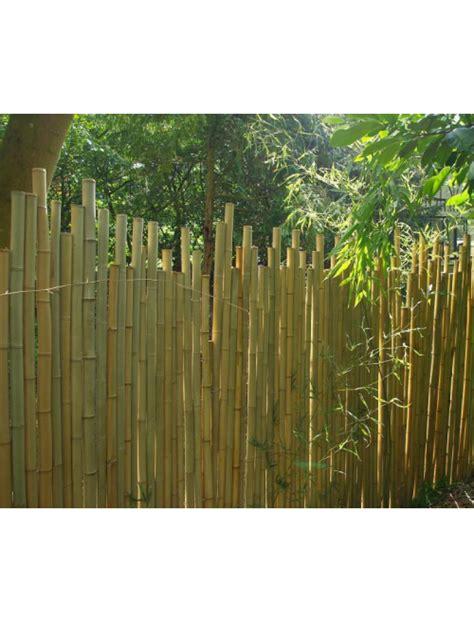 cloture en bambou cloture jardin pare vue en bambou naturel bambouland