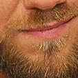 Curtis Axel's Beard (@CurtisAxelBeard) | Twitter