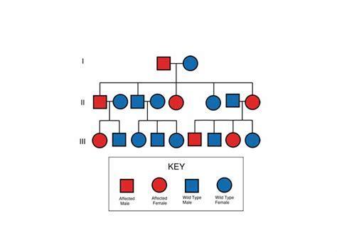 Science Pedigree Chart