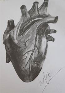 Heart Realistic Drawing