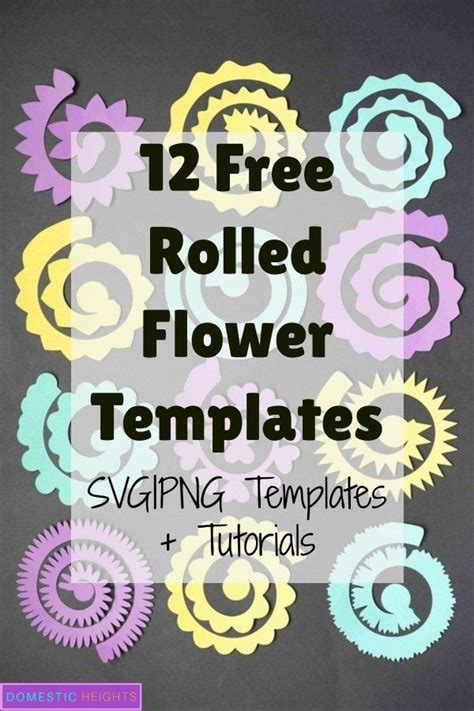 rolled flower svg templates diy  paper flowers