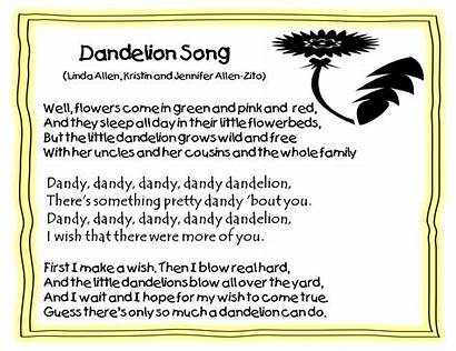 Dandelion Poems Kindergarten Grade Dandy Poem Dandelions
