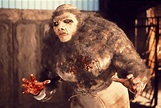 Frankenstein and the Monster from Hell   Quad Cinema