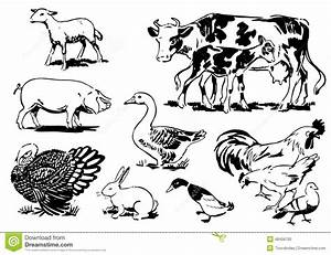 Retro Farm Animals 02 Stock Vector - Image: 48456705