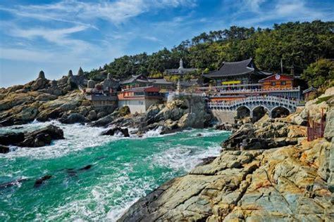 tempat wisata  korea selatan  musim semi tempat