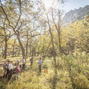 herbal medicine level outdoor herbal studies oct