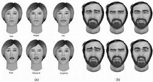 A  Six Universal Facial Expression Targets Designed For