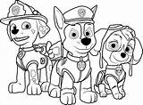 Paw Patrol Coloring Game Play Cartoon sketch template