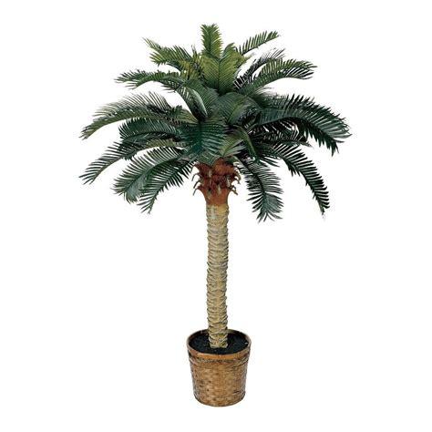 nearly 5043 sago silk palm permanent tree ebay