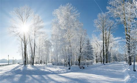 living  earth sounds  winter