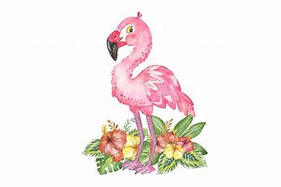 Flamingo Clipart Watercolor Tropical Flowers Painting Graphics