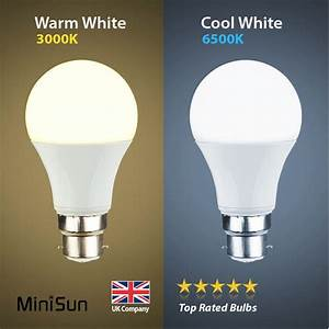 Led Light Bulbs : 6w 10w led bc b22 gls light bulb energy saving lamp warm cool day white globe a ebay ~ Yasmunasinghe.com Haus und Dekorationen