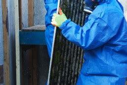 remove  friable asbestos class  cpccdea