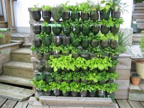 Vertical Gardening : 13 Plastic Bottle Vertical Garden Ideas