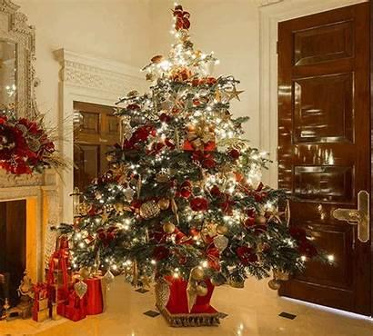 Christmas Merry Tree Trees Happy Animated Gifs