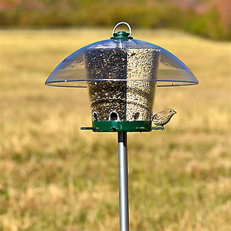 bird feeder poles pet 174 universal bird feeder pole