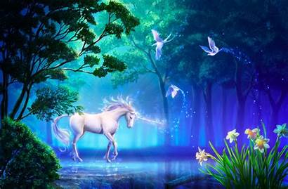 Unicorn Forest Horse Flowers Lake Birds Wallpapers