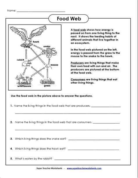 Free Printable Worksheets On Food Chains Homeshealthinfo