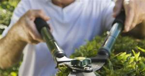 How To Clean A Hedge Trimmer