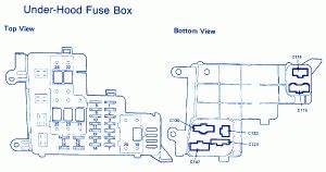 1989 Honda Accord Lx Fuse Box Diagram