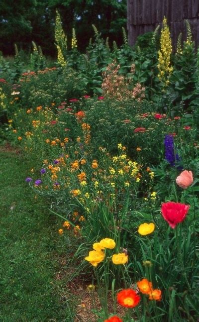 17 Best Images About Perennial Gardens On Pinterest