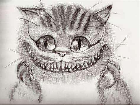 cheshire cat drawing drawings pinterest cats