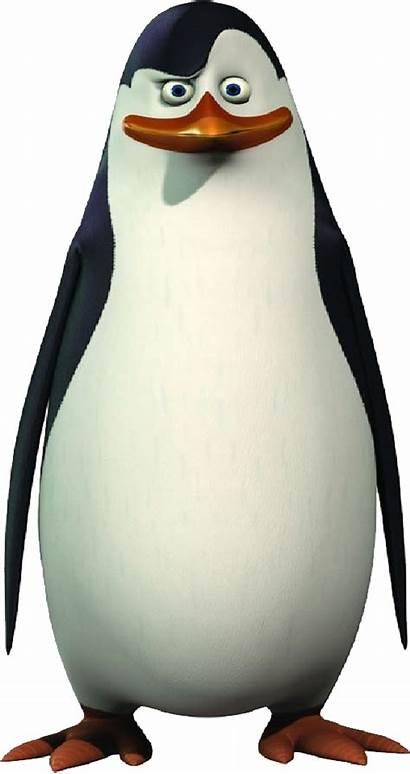 Madagascar Penguin Transparent Penguins Eva Purepng Skipper