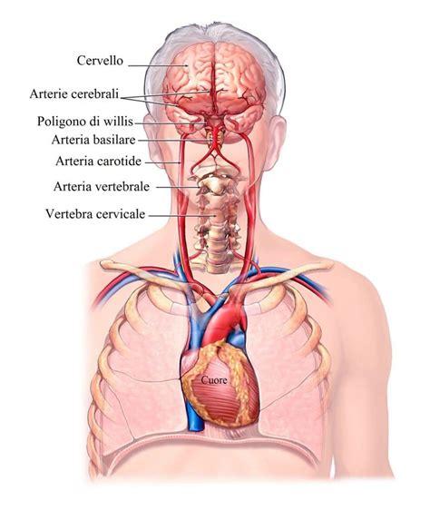 vertigini mal di testa vertigini o giramenti di testa sintomi cause diagnosi e