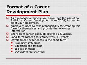 future plans and career goals essay
