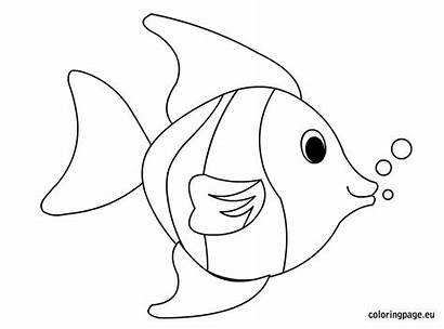 Fish Coloring Tropical Template Pages Maybe Coloringpage