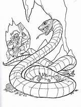 Coloring Pirates Pages Caribbean Pirate Rattlesnake Diamondback Western Printable Treasure Printables Colouring Snake Cartoon Popular Getcolorings Coloringhome Colorings Colors Games sketch template