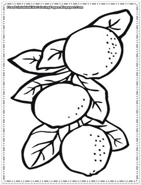 Coloring Oranges by Orange Coloring Pages Getcoloringpages