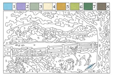 paint by numbers free printables for adults