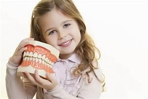 Broken Tooth Emergency: You are 1st Responders!