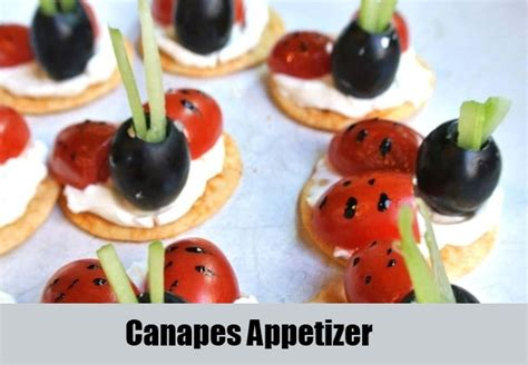 fresh canapes 5 list of different types of appetizers various kinds of