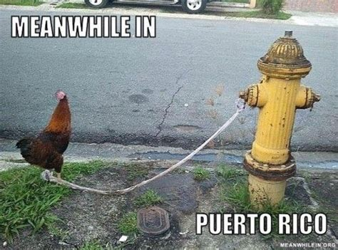 Meanwhile In Puerto Rico