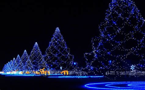 tree lights christmas wallpaper hd wallpapers