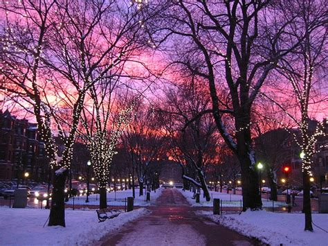 Best 25+ Boston Winter Ideas On Pinterest  Winter, Winter Time And Winter Images