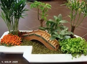 Plante Pour Jardin Japonais : pourquoi je n 39 aime pas les plantes grasses le pouvoir ~ Dode.kayakingforconservation.com Idées de Décoration