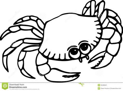 beach crab stock image image