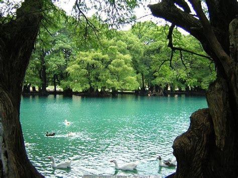 lago de camecuaro tangancicuaro michoacan mexico