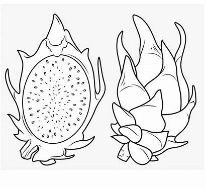 Coloring Fruit Dragon Pages Printable Sheet Onlinecoloringpages