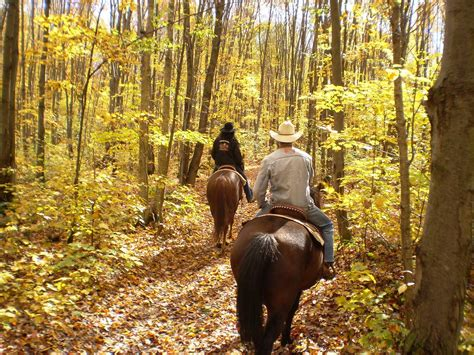 riding horseback mountains smoky fall tennessee places gatlinburg things