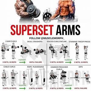Upper Body Training U0026 Superset Biceps Blast Bodybuilding Program